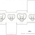 Printable Triceratops Dino Favorbox