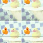 Blank Foldable Ducky Thank You Cards