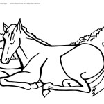 Printable Horse Coloring Page 4