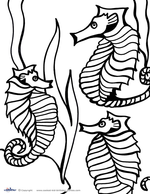 6 32 besides  also  besides  also under the sea coloring pages 12 further  besides mrprintables under the sea coloring pages diver furthermore under the sea furthermore seascape as well  additionally . on free printable under the sea coloring pages